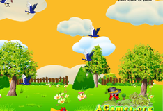 Попугай  Пат учится летать