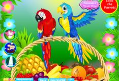 Игра Красивые попугаи