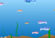 Игра Игра Рыбки
