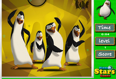 Игра Спрятанные звезды на фото с пингвинами