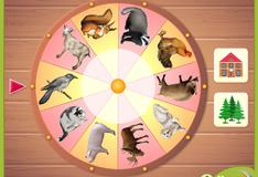 Игра Волшебное колесо
