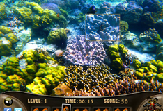 Игра Охотник за морскими обитателями