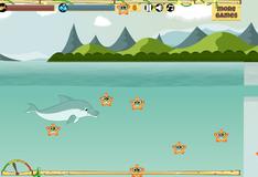 Игра Путешествие дельфина