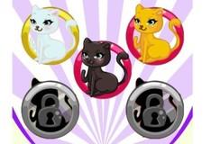 Игра Дизайнер одежды для кошек
