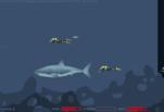 играйте в Сумасшедшая акула