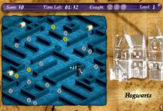 Гарри Поттер в лабиринте