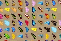 Игра Соединяем бабочек