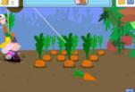 Играть бесплатно в Игра Погоня за Курицей