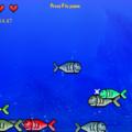играйте в Игры Поедание рыбок