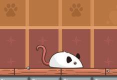 Игра Поймай мышку