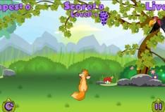 Игра Игра Лисица - Стрилок