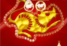 Игра Игра Китайский зодиак