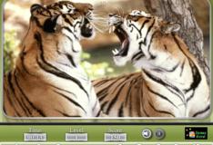 Игра Игра Опасные животные: Найдите числа