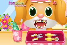 Игра Лечение зубов питомцев