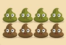 Игра Poop It
