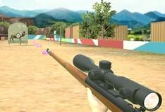 Игра Охотник 3D