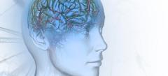 Игры Для развития мозга онлайн бесплатно