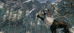 Игры Охота и рыбалка онлайн бесплатно