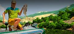 Игры Про рыбалку онлайн бесплатно