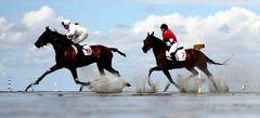 Игры Скачки на лошадях онлайн бесплатно