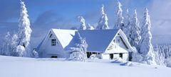 Игры Зима онлайн бесплатно